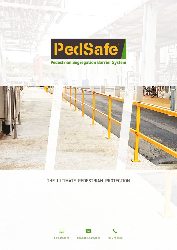 thumbnail of pedsafe_brochure